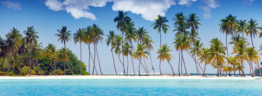 Как выбрать круиз по карибскому морю